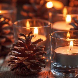 Study Finds Scented Candles and Air Fresheners Pose Dangerous Health Risks